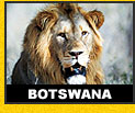 Wildlife Holiday Tour Botswana